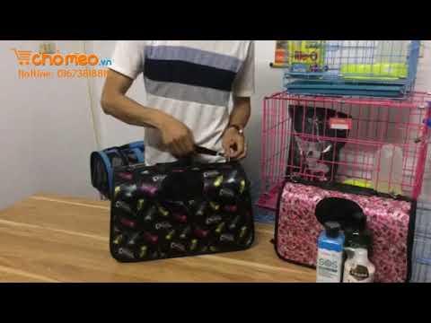 Hướng dẫn sử dụng túi xách cho chó mèo | ChóMèo.vn