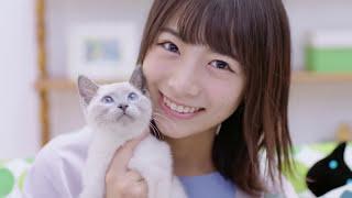 ムビコレのチャンネル登録はこちら▷▷http://goo.gl/ruQ5N7 乃木坂46の北...