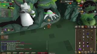 14:52 OSRS Solo Raid World Record