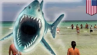 Shark attack: North Carolina teen becomes seventh victim in one month - TomoNews
