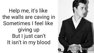 Shawn Mendes - In My Blood Acoustic (Lyrics)
