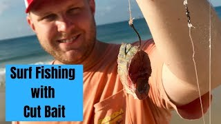 Surf Fishing with Cut Bait