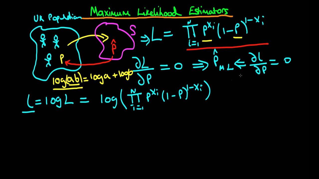 Maximum likelihood programming in r