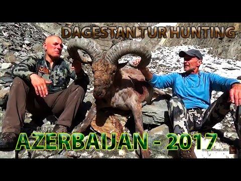 Dagestan Tur hunting