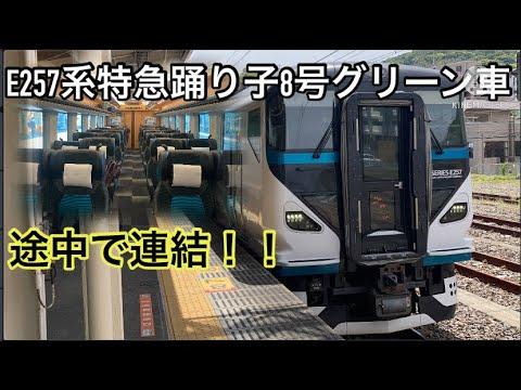 【速く快適に移動】E257系特急踊り子8号のグリーン車に乗ってきた。