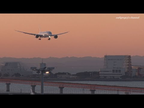 Japan Airlines (JAL) Boeing 787-8 Dreamliner JA839J 羽田空港 着陸 2017.12.30