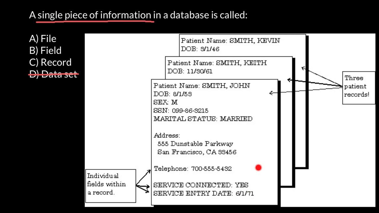 ssn dob database
