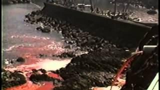 'Земляне'  Запрещенный фильм к показу во многих странах шокирующий фильм о животных