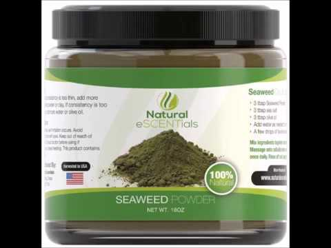 Seaweed Powder – 100% Organic Kelp Powder   Cellulite Treatment   Fresh Norwegian Ascophyllum Nodosu