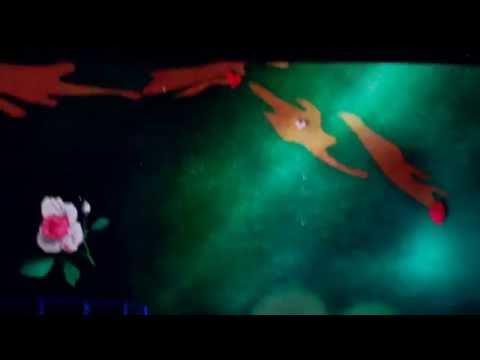 Stevie Nicks-Wild Heart/Bella Donna LIVE