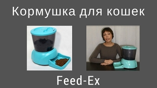 видео Автокормушка для собак и кошек Feed-Ex PF5