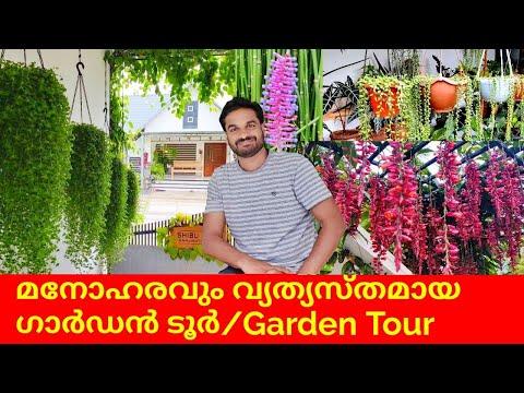 മനോഹരവും വ്യത്യസ്തമായ ഗാർഡൻ ടൂർ🌹💚🌿  Amazing and Creative Garden Tour in India   Part-1   salu koshy