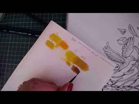 Derwent Water Colour Pencils in Imagimorphia using Paper Palettes