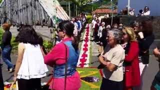 Procissão - Festa Santo António 2015