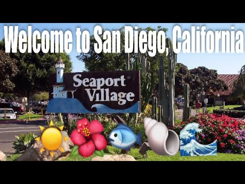 San Diego, California trip, day 1! Hotel arrival| Seaport| Mission beach