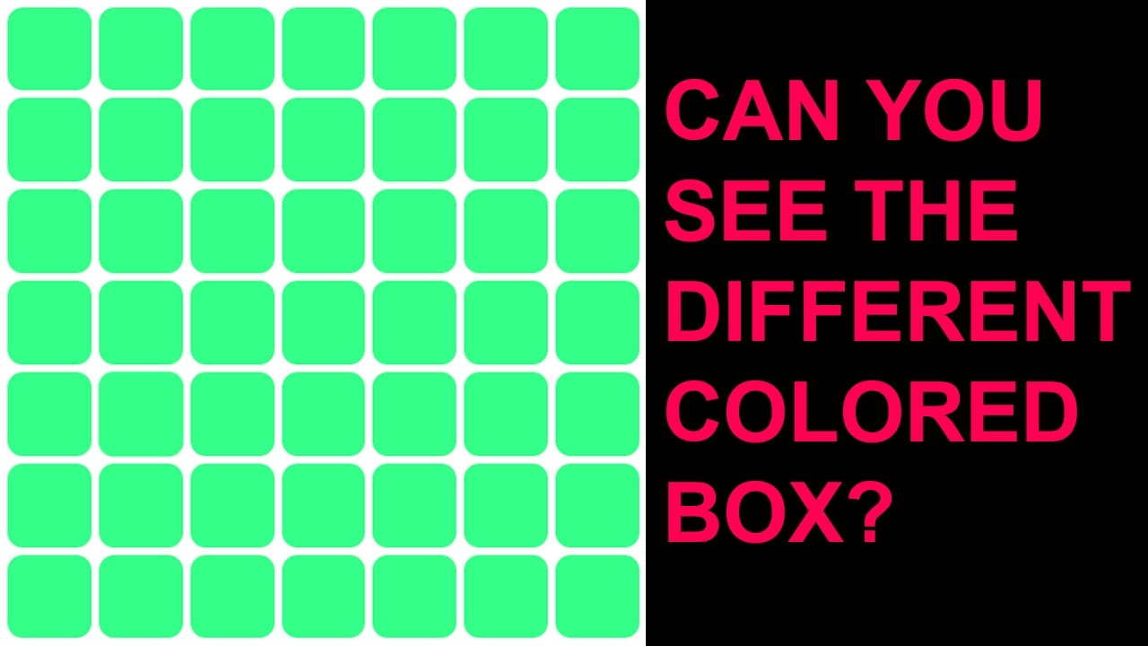 What Color Do You See When Your Blind Color Blind Test Do