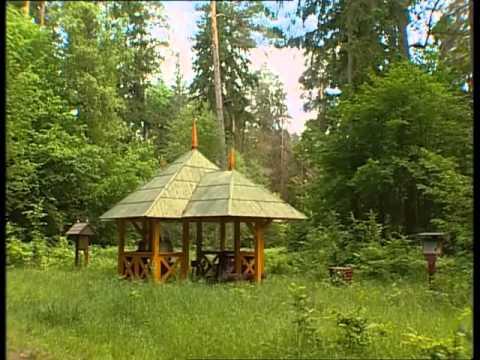 Białowieski Park Narodowy Rok w Puszczy