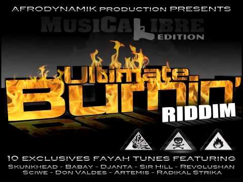 Ultimate Burnin Riddim - Don Valdes- Hou Haa