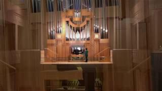 Felipe Tovar-Henao - «O llanto místico»(2016) threnody for solo organ