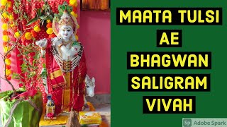 Sindhi Videos,Mata Tulsi Ae Saligram Vivah,How to do Tulsi Vivah at home?