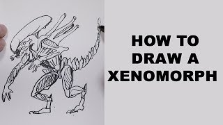 xenomorph drawing easy draw drawings paintingvalley