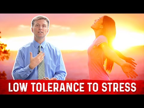 Identifying Adrenal Stress by Your TOLERANCE!