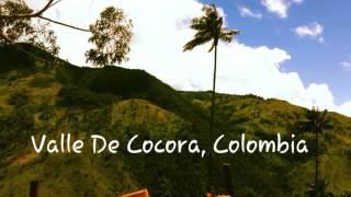 Adventure the Valle de Cocora, Colombia