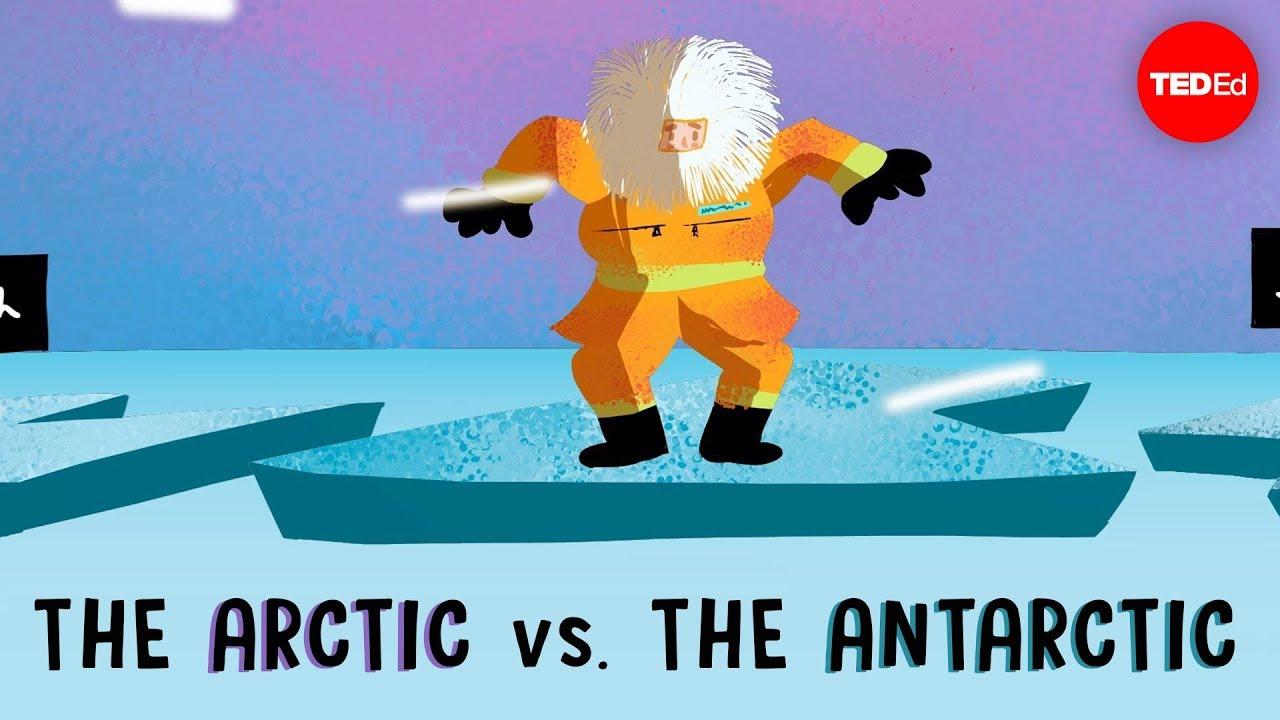 the arctic vs the antarctic camille seaman youtube