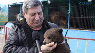 Мимимишка: медвежонок радует жителей Ульяновска