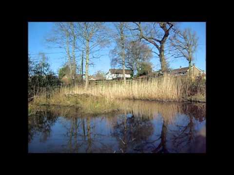 Local Pond Prestwood 16 03 14