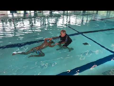 Virtual Reality Dolphin Swim session