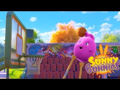 Cartoons for Children | SUNNY BUNNIES SLAM DUNK | Funny Cartoons For Children