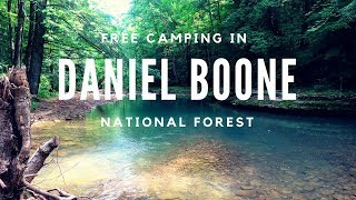 Freecamping in Daniel Boone National Forest!!