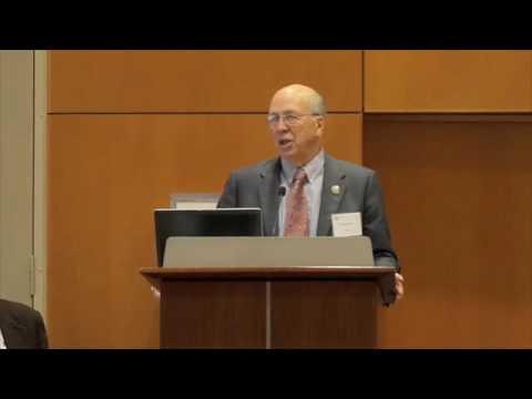 JSG 10-year Anniversary Panel 1: Geology (2/7)