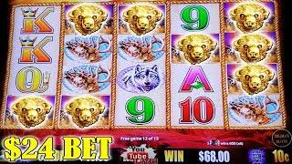 WOW $24 BET! BUFFALO GOLD HIGH LIMIT SLOT MACHINE | BONUS
