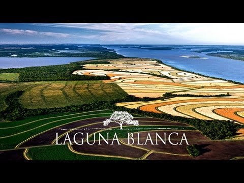 Laguna Blanca (English Version)