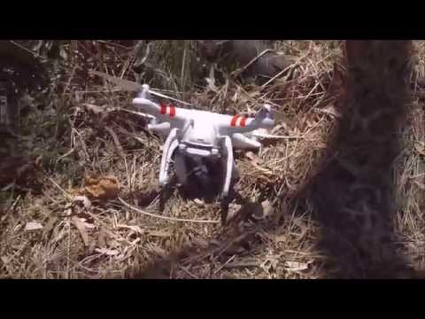 How To Get A Drone Out Of Tree Top.
