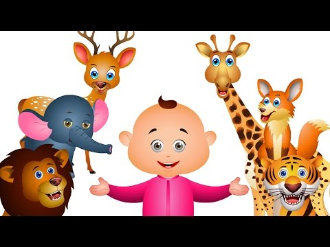 Learn Wild Animals For Kids & Many More | Kids Learning Videos | JamJammies Nursery Rhymes