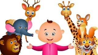 Learn Wild Animals For Kids & Many More - Kids Learning Videos - JamJammies Nursery Rhymes