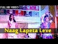 Download Naag Lapeta Leve'' Rajasthani Song | Live Dance Program | PINKY BHAT | HD  | Marwadi Songs 2015 MP3 song and Music Video