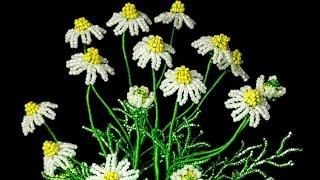 Ромашка аптечная (лекарственная) из бисера. Авторская работа. Бисероплетение Beaded chamomile flower