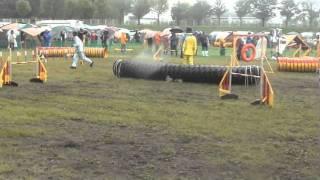 20110918 Hokkaido Paze JKC JP2