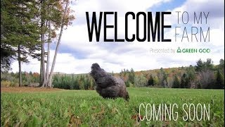Welcome to my Farm