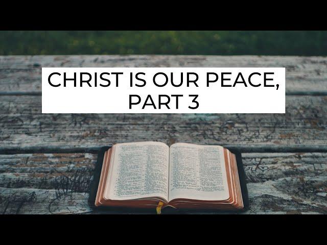 Christ Is Our Peace, Part 3 - Ephesians 2:15-16 (Pastor Robb Brunansky)