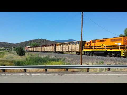 Central Oregon & Pacific Railroad at Hornbrook, CА