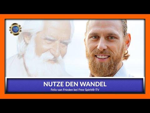 Nutze den Wandel - Felix van Frieden