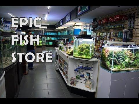 Amazing Aquarium Store Tour In Mexico!