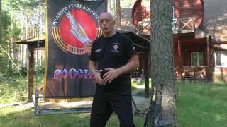 Вадим Старов о Системе, направлениях, методах и сроках обучения.