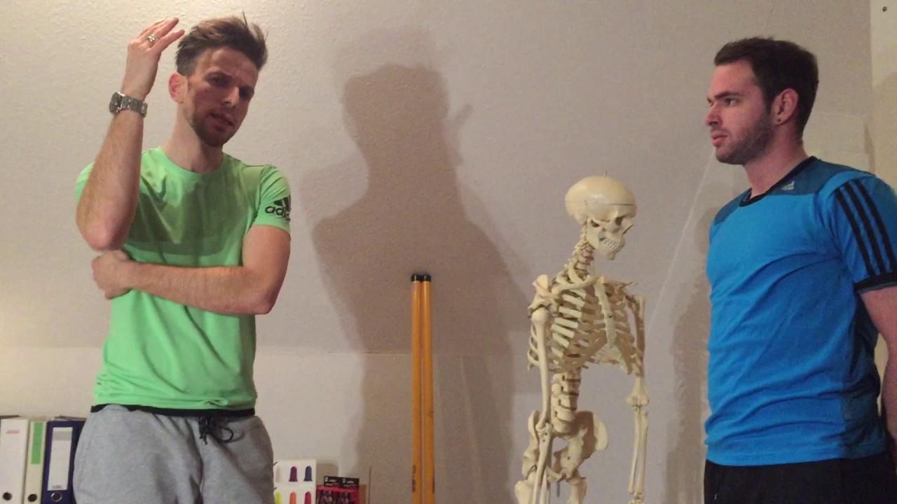Das Schultergelenk: Funktionelle Zusammensetzung und Verbesserung ...