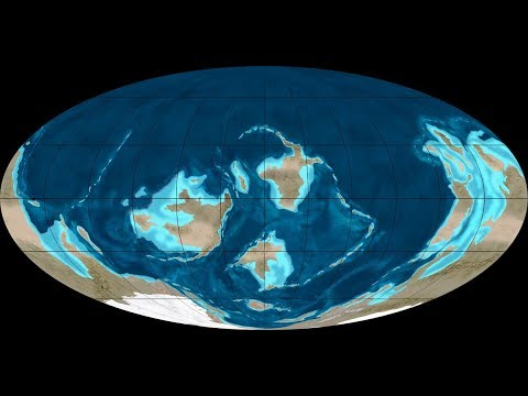 Spending a Day on Earth 500 Million Years Ago